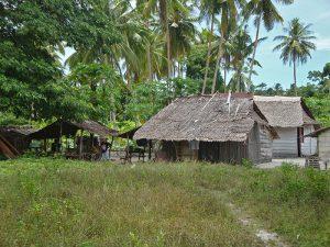 Huis op Hulaliu